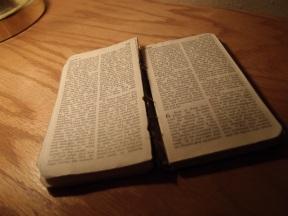 Dad's New Testament