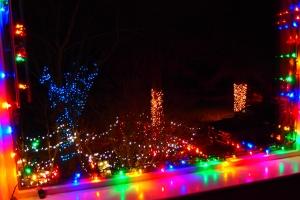 2019 Christmas Lights